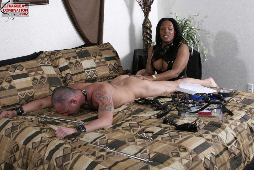 Hot latina ass clips