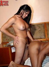 Tranny pantyhose, shemales jacking off