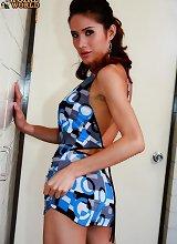 Thai transexuals, shemales plus